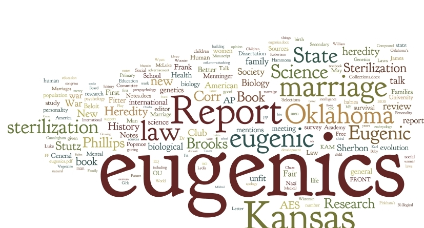 dissertation primary source wordcloud